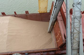 grain in a lorry